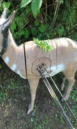 Picure of a 3d archery target in the woods with 4 arrow shot through it.