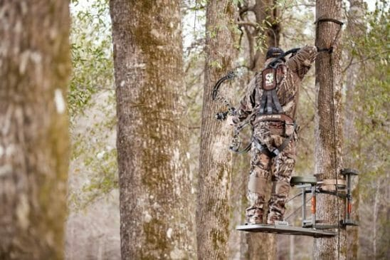 Tree stand guide