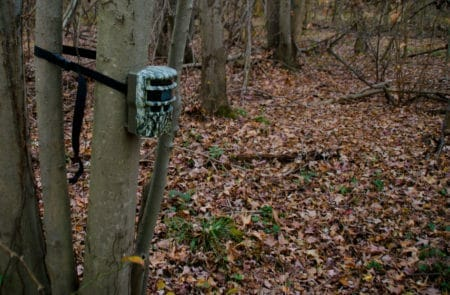 Photo that shows how to setup a trail camera