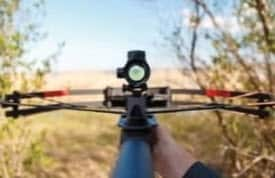 crossbow in sights